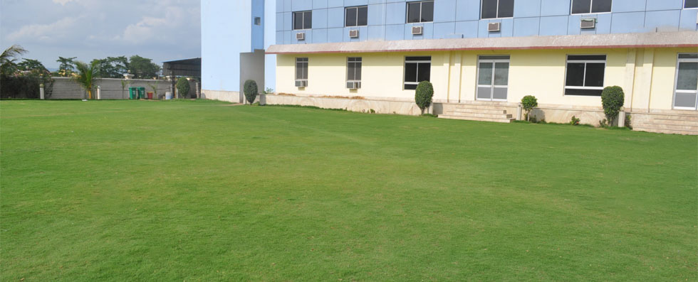 Front view Lawn 2